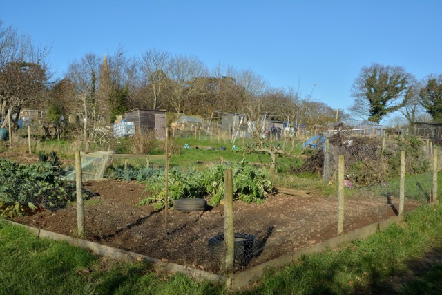 Landscove allotments