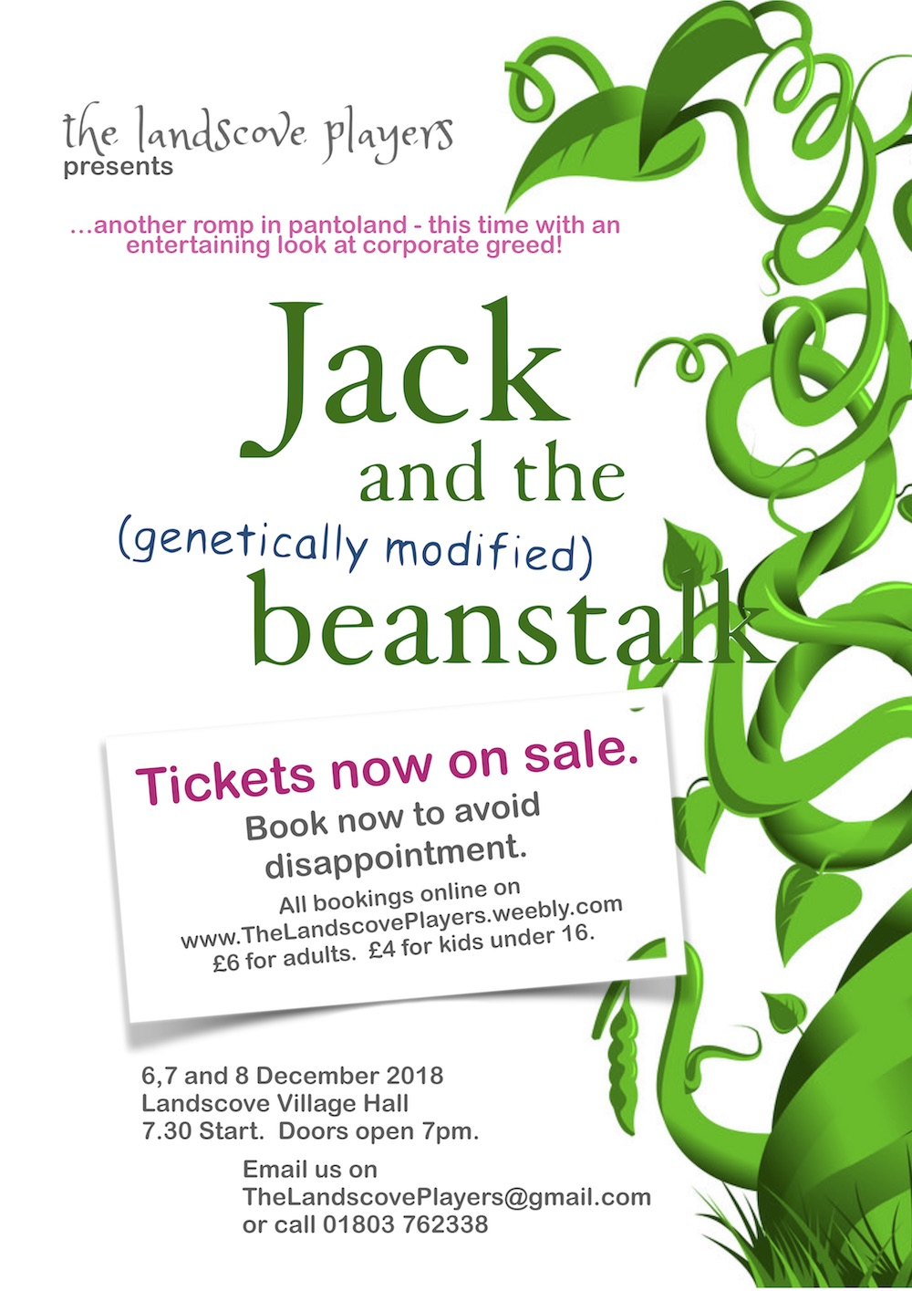 Jack & the Beanstalk Panto – 6,7, 8 Dec – Landscove Village Hall